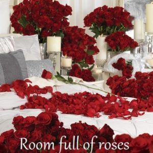 A Room Full of Roses